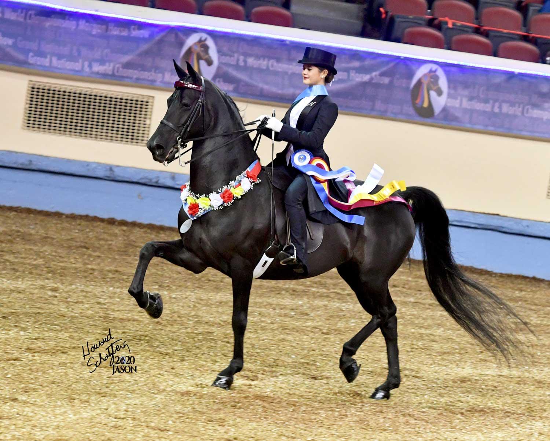 Nini Hodge 2020 Reserve World Champion